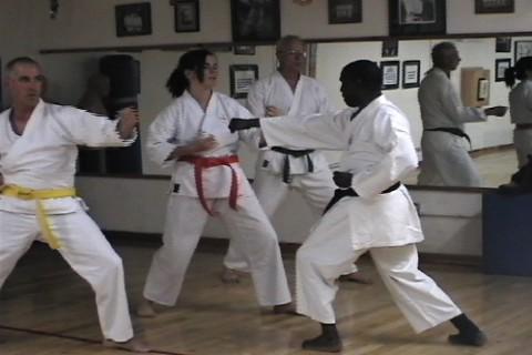 Adult Color Belts Class 2009