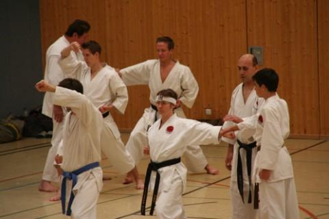 Sensei's Europe Seminar 2007